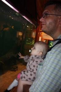 47.Hvordan det går med fisken på barneposten på A-hus, tenker nok Eliisa når hun ser på de store fiskene i akvariet på Fetsund Natursenter